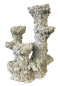Preview: BLAU Reef Pillar Broad 3 Branches