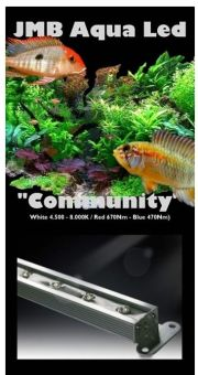 "JMB Aqua Led ""COMMUNITY"" - mit Blau"