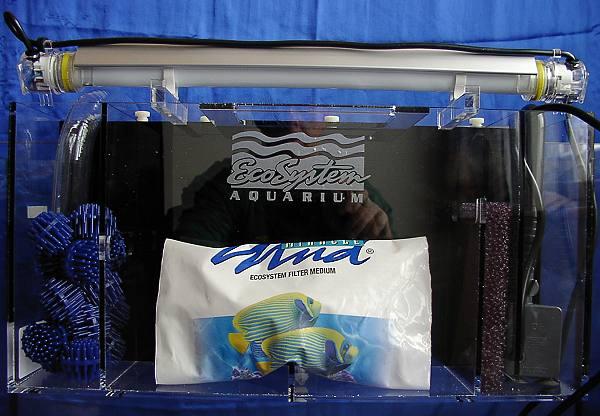 Aquarium store schweizer aquaristik onlineshop und for Meerwasser aquaristik shop