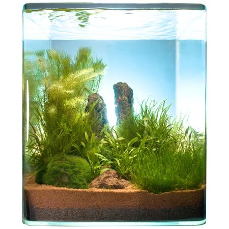 aquarium store schweizer aquaristik onlineshop und terraristik onlineshop dennerle nano. Black Bedroom Furniture Sets. Home Design Ideas