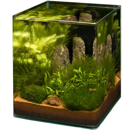 aquarium store schweizer aquaristik onlineshop und. Black Bedroom Furniture Sets. Home Design Ideas