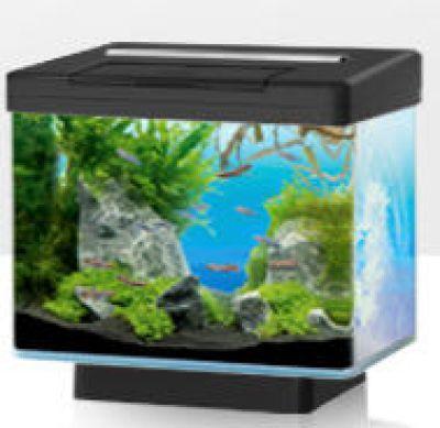 aquarium store schweizer aquaristik onlineshop und terraristik onlineshop juwel aquarium vio. Black Bedroom Furniture Sets. Home Design Ideas
