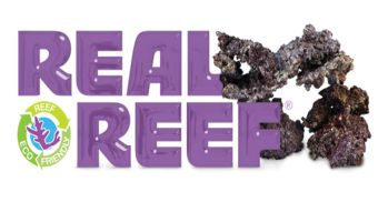 Real Reef Rock Mixed Box 4th Generation 25kg