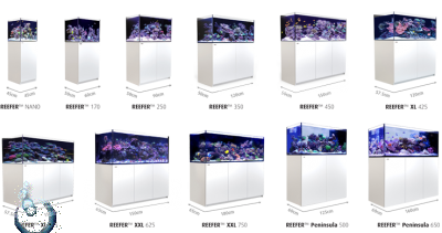 RED SEA Reefer XXL 625 Deluxe (incl. 3 X Hydra 26HD LED) weiss